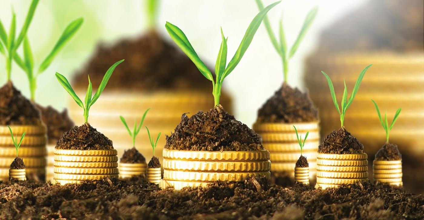 Küçük Miktarda Yatırım için Forex