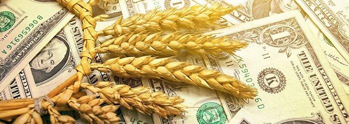 Forex'te Buğday Yatırımı ile Para Kazanmak