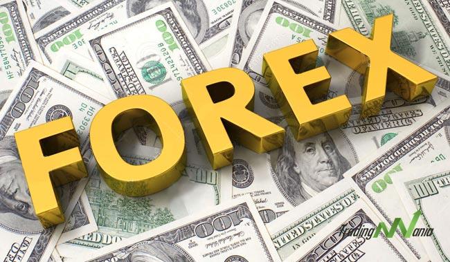 Forex Yatırımcısı Olmak için Ne Yapmak Gerekir